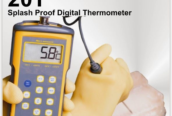 20T RTD THERMOMETER WITH PROBE CONSTANT